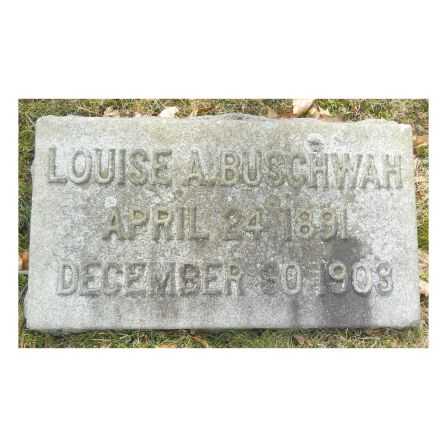Twelve year old Louise Buschwah lost her life at the Iroquois Theater